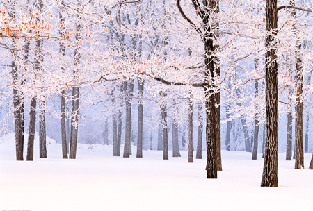 Winter Landscape Photography Workshop